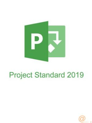 Microsoft Project Standard 2019 - licencia - 1 PC All Languages 1 PC Click-to-Run - ESD