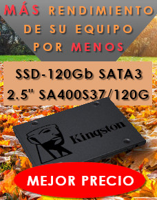 Su equipo volará - Kingston SSD 120Gb
